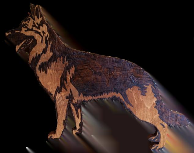 Woods – Large – Dog – Alsation