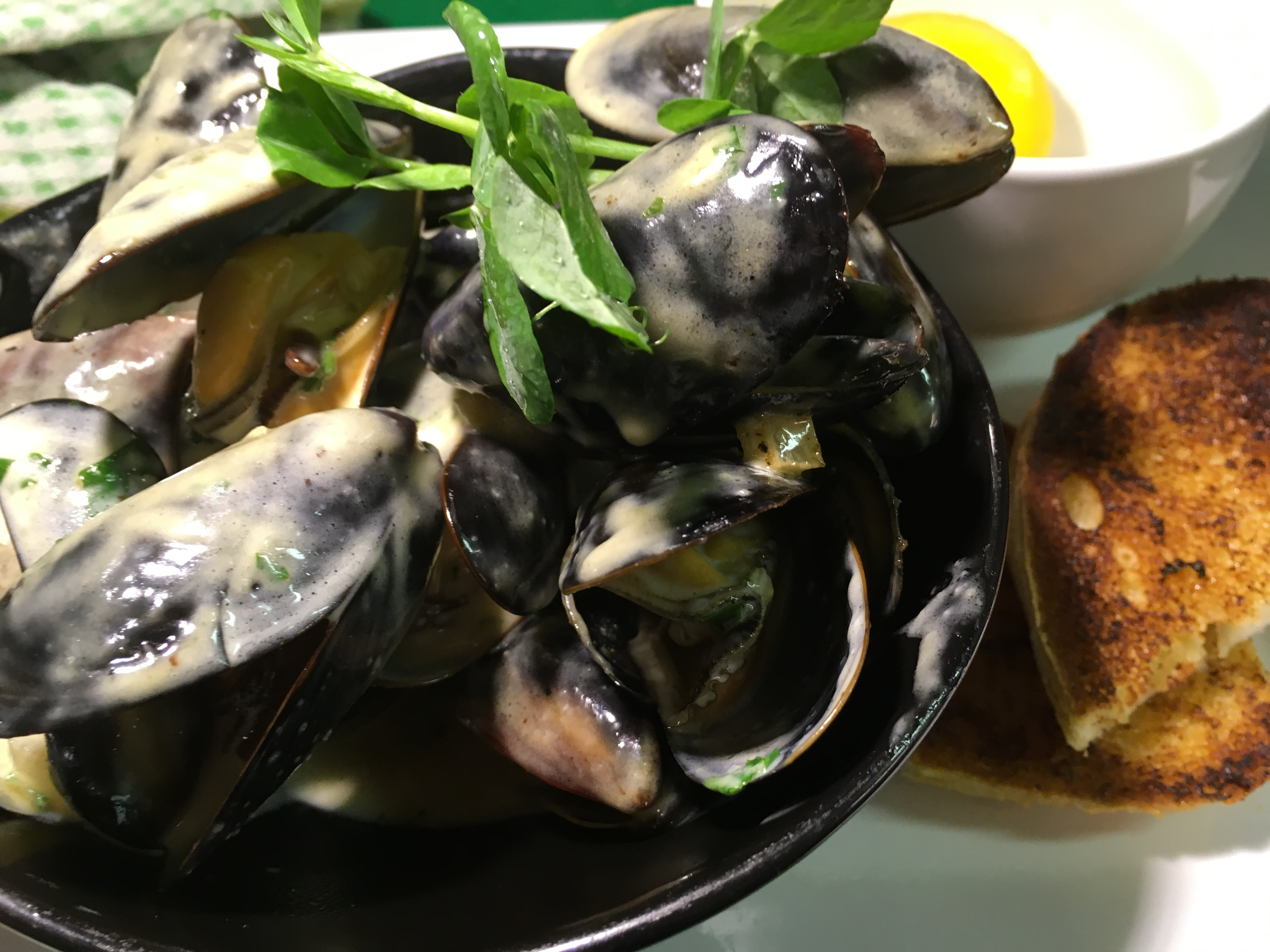 creamy-mussels